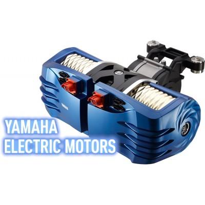 Дешевле только даром: китайские электромобили Kandi поступят в п